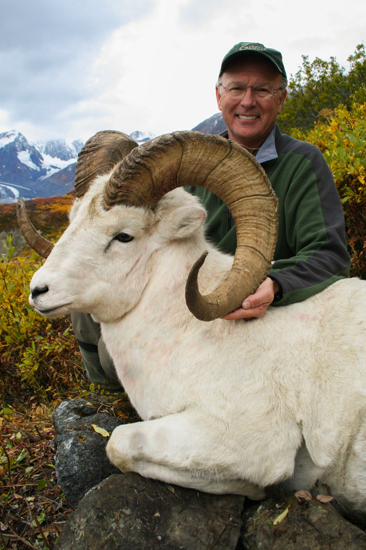 Dall Sheep Record Book
