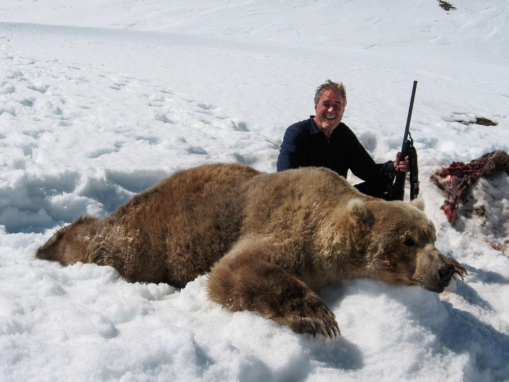 Brown Bear Kills Caribou
