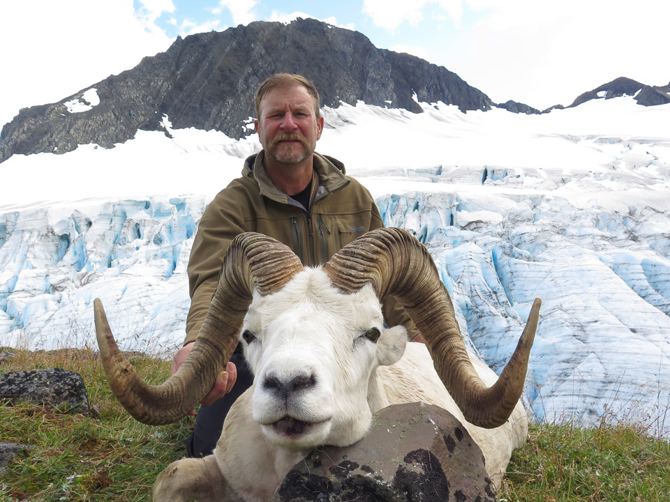 Archery Hunt Sheep In Alaska