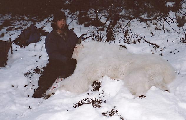 ak goat hunts