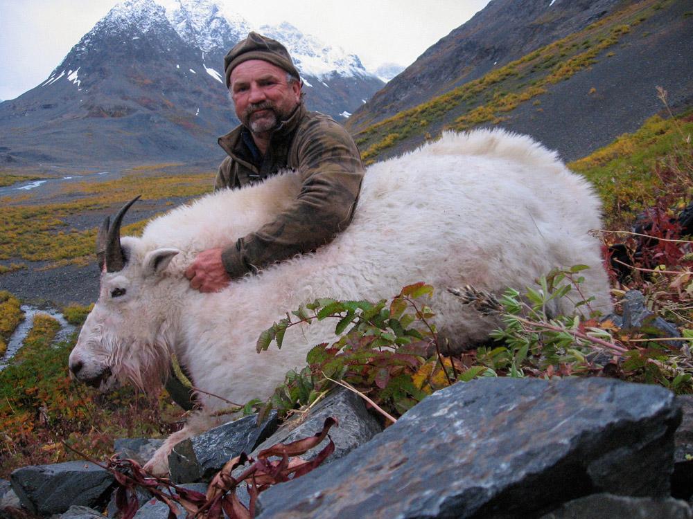Alaska Goat Hunting Trips