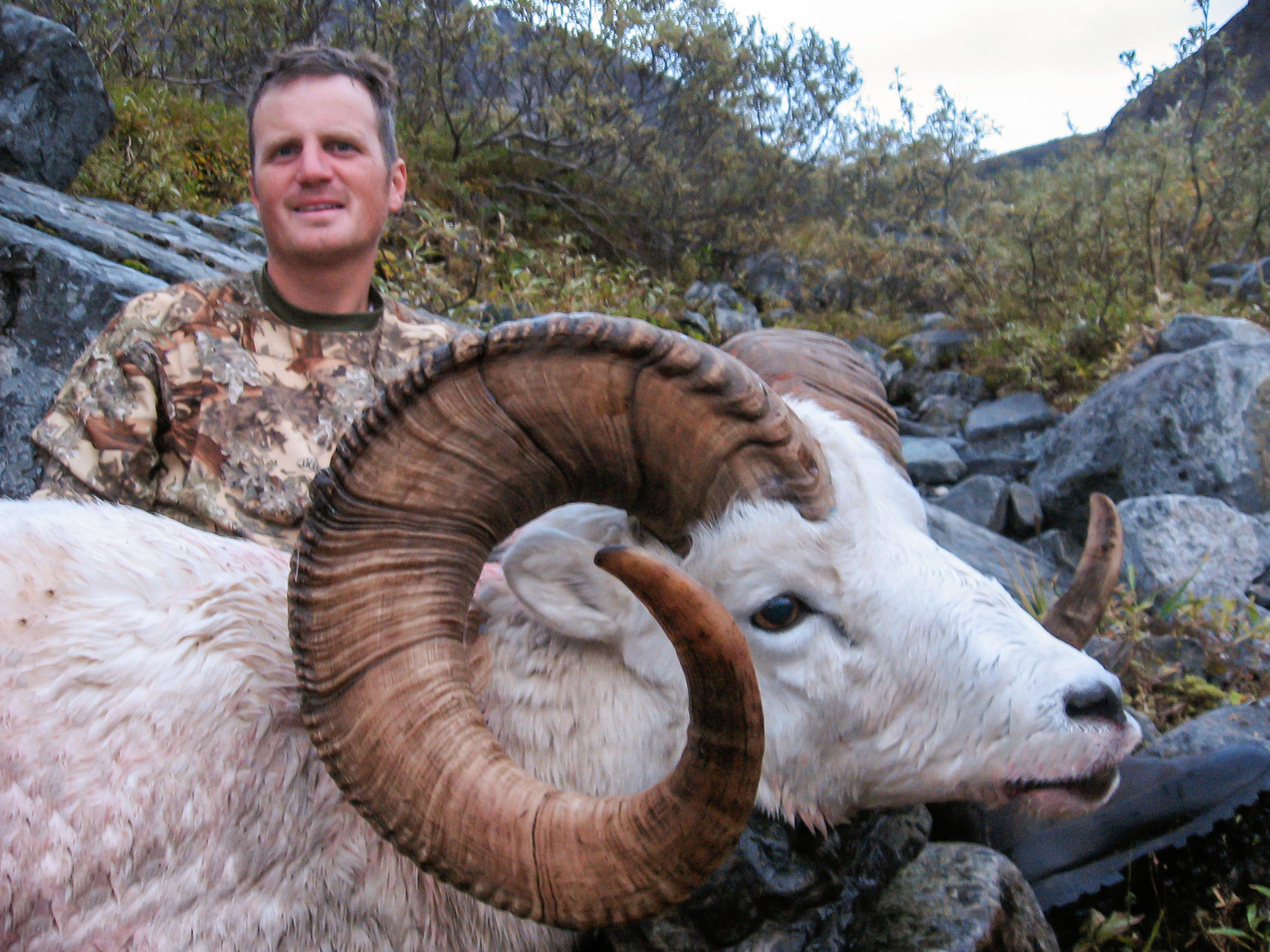 Alaska Guided Sheep Hunts