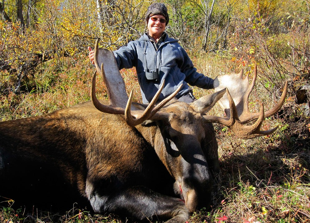 Alaska Moose Hunts