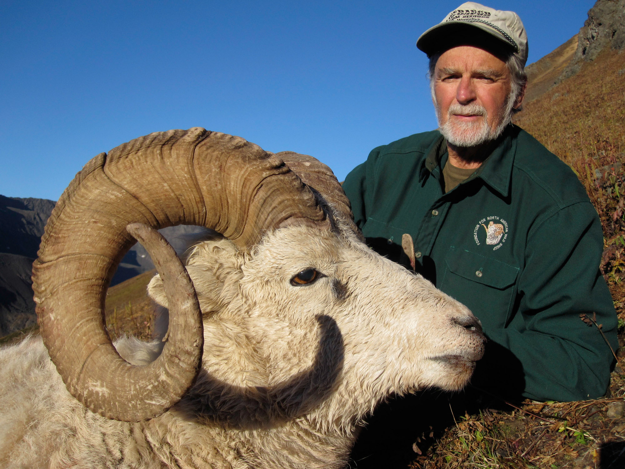 Alaska Sheep Hunts