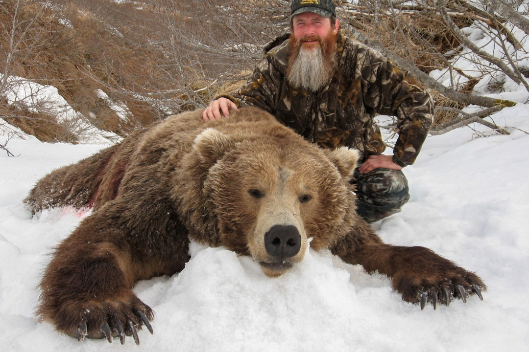 Alaska Brown Bear Hunting - Guided Bear Hunts - photo#23