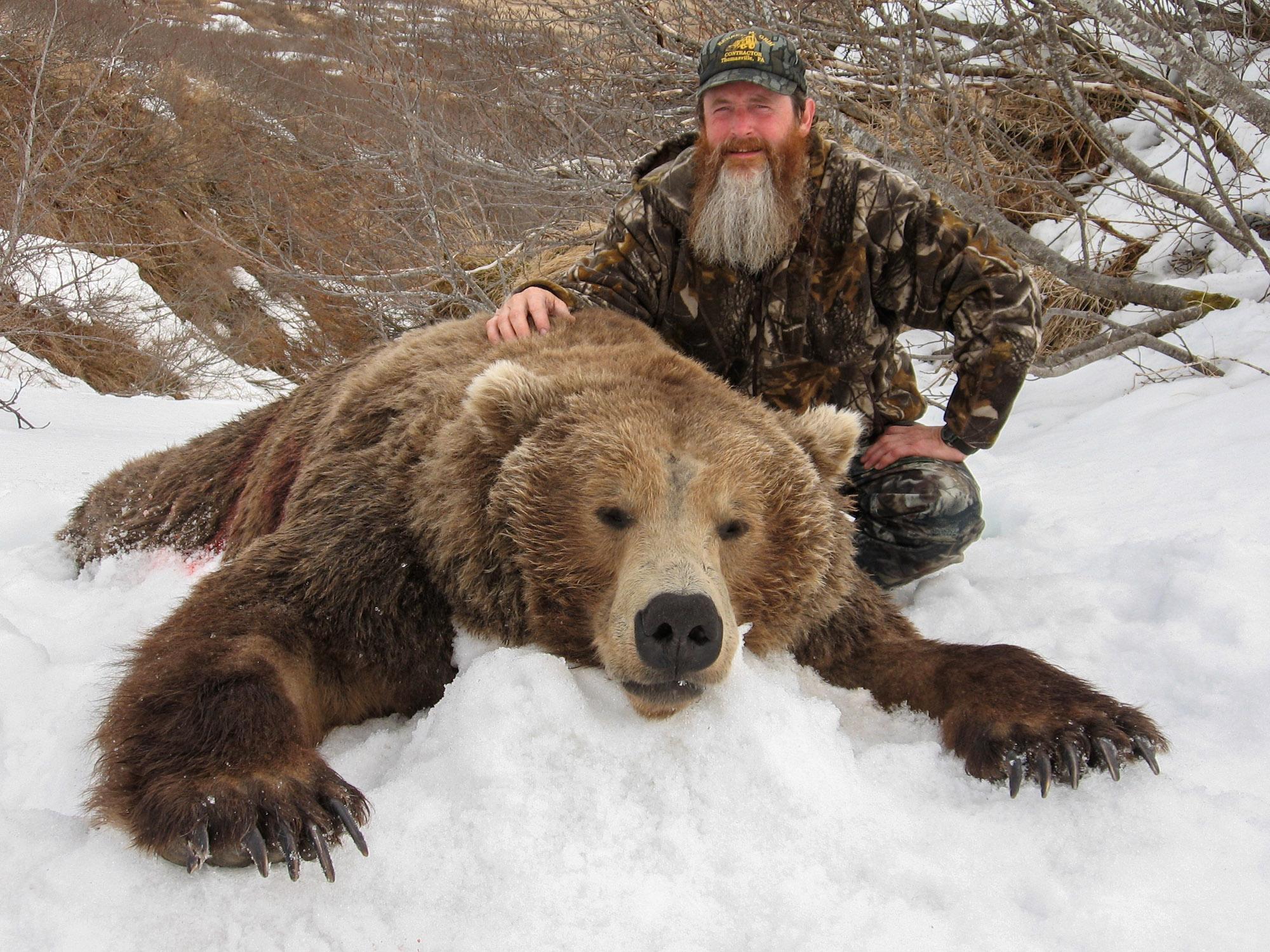 Brown Bear Hunt