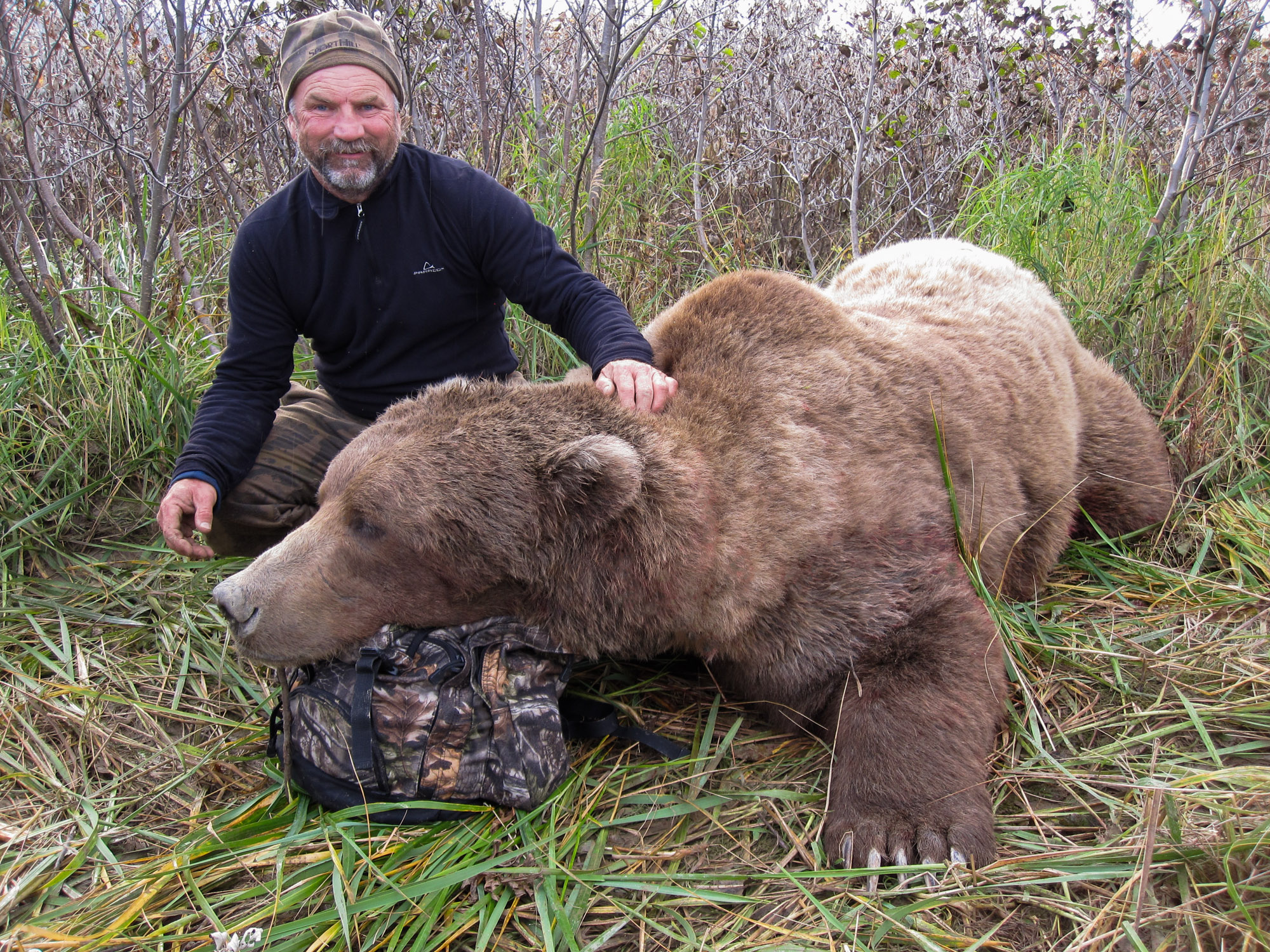 A Bear Hunt Alaska Brown Be...