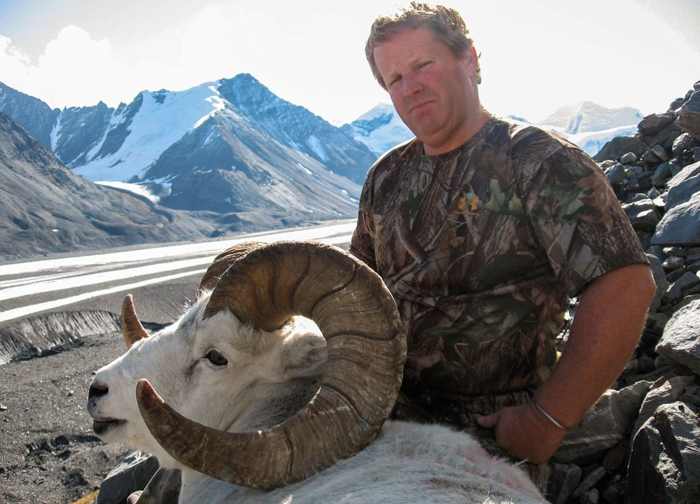 Chugach Trophy Sheep
