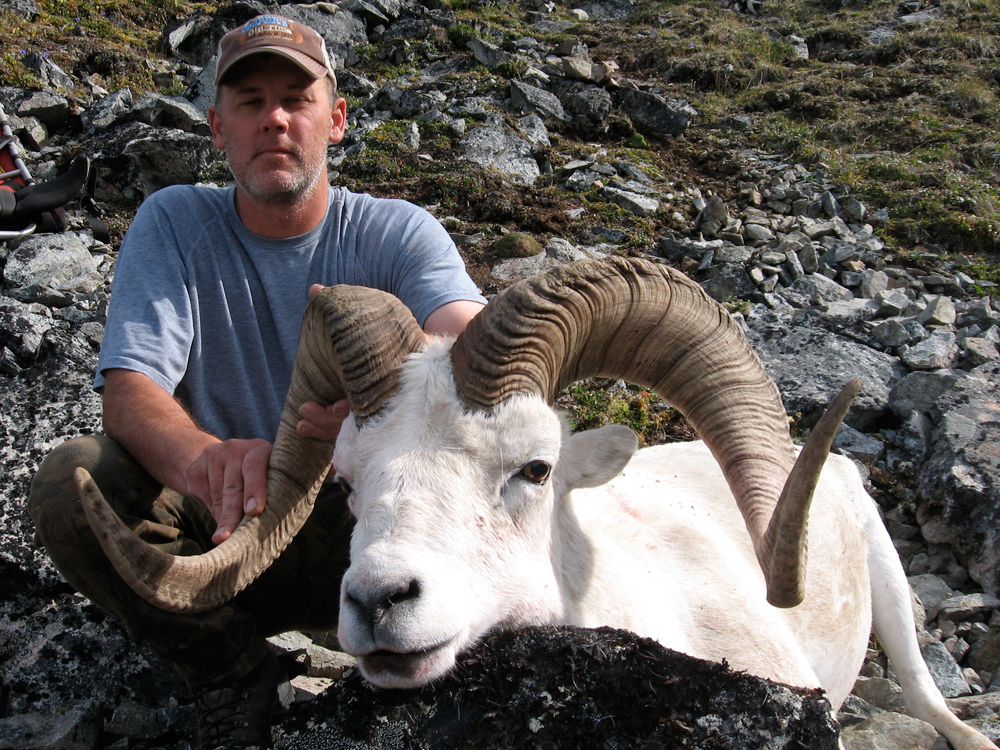 Dall Sheep Hunting Trips