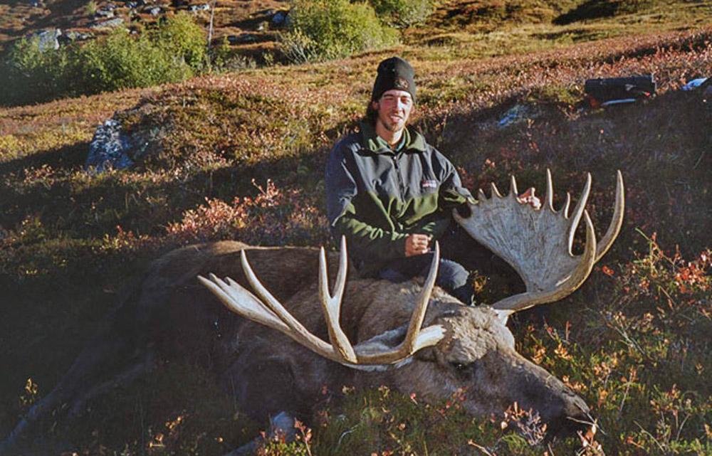 moose hunts Alaska