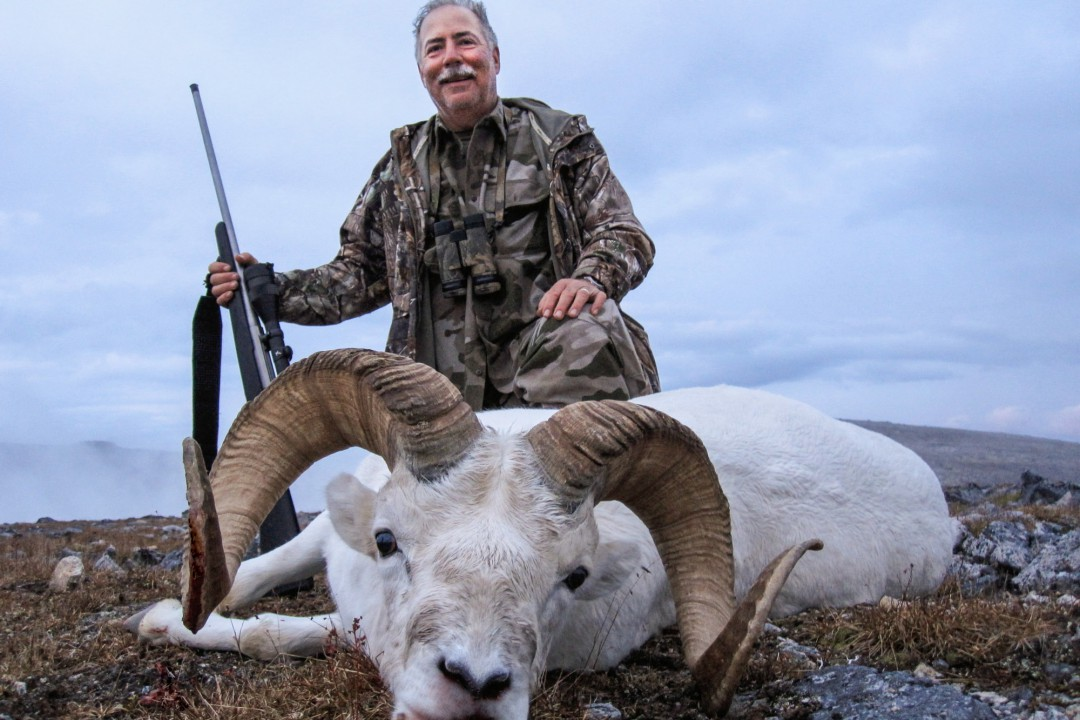 Sheep Hunting Outfitters