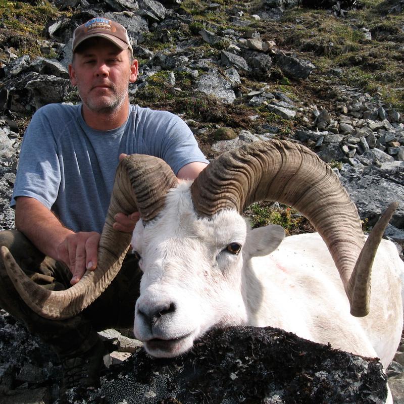 Dall Sheep Hunting