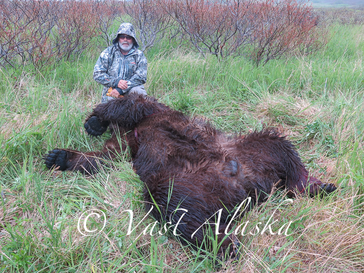 Archery Brown Bear Alaska