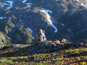 Sheep-Hunt-Chugach-Range-4