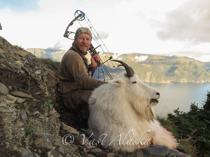 Archery Hunt Goat Alaska