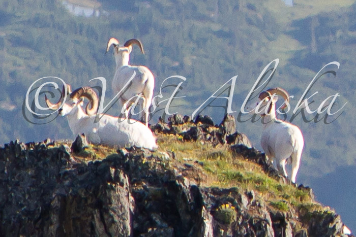 Vast Alaska