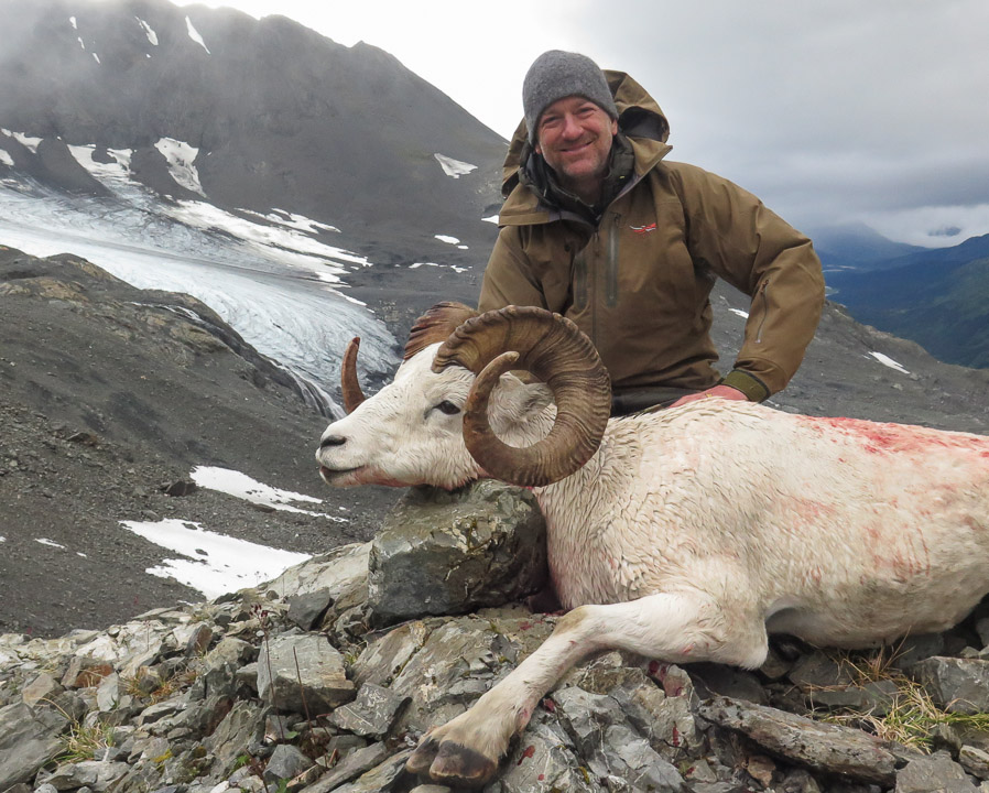 Hunt Sheep Alaska