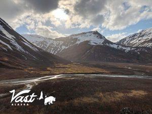 Vast Alaska Brown Bear Country